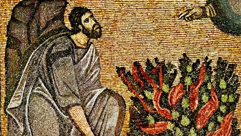 Burning Bush Mosaic